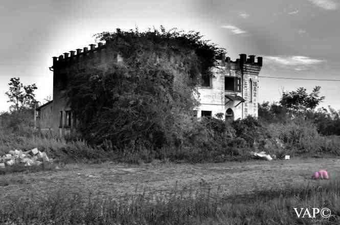 MaiAletto (1)